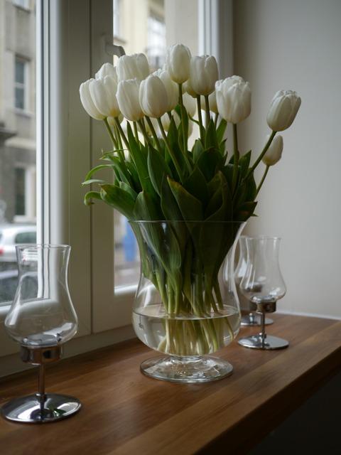 OLIVA Kwiaty