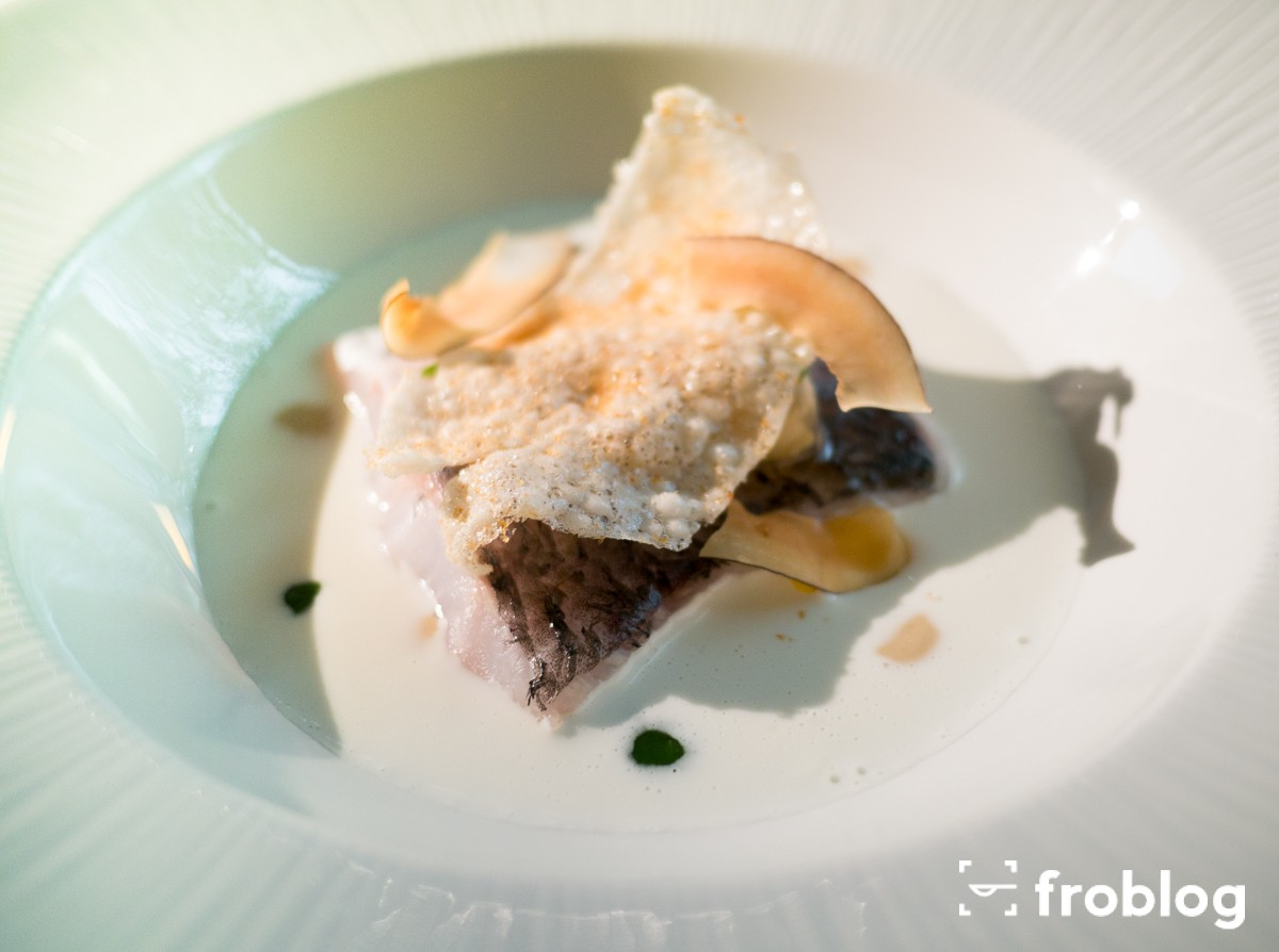 Roca Moo: Hake with coconut pil-pil, coriander and clams