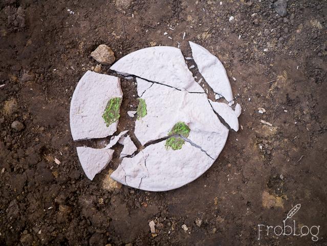 Food Think Tank Po zjedzeniu talerze tłuczemy na ziemi