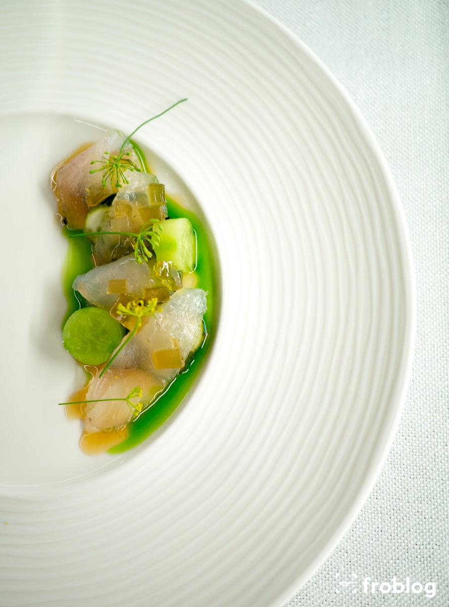 Acquario: Sandacz & ogórki małosolne